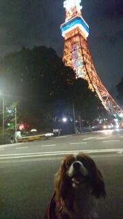 東京タワーキャバリア.jpg