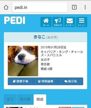親戚のワンちゃんを探せるPediに登録.jpg
